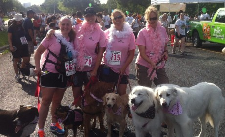 Mighty Texas Dog Walk 2011