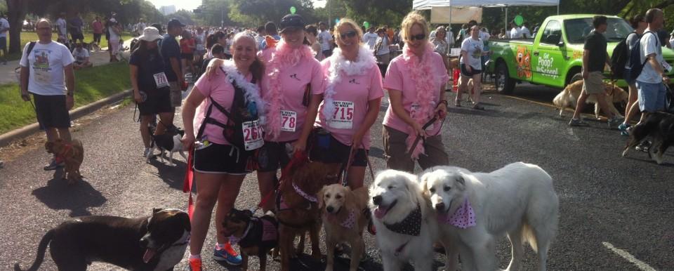 Mighty Texas Dog Walk 2011
